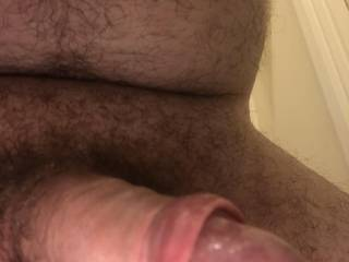 Fat front shot of my hardening cock