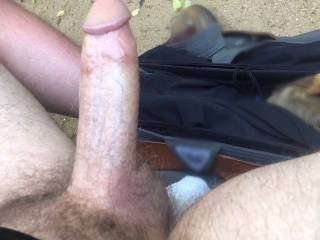 A shot of my thick cock in the woods