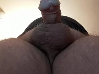 my cock and balls