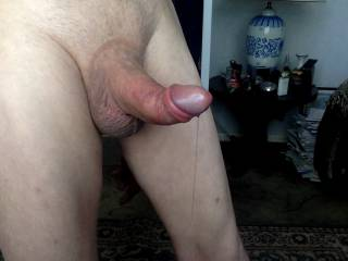 a photo of my dick with precum