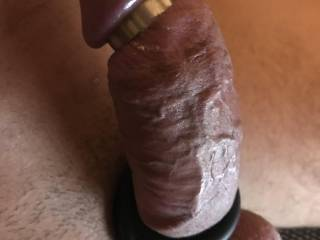 My very tight cockhead ready to slide in a pretty pussy. Who wants a seat?