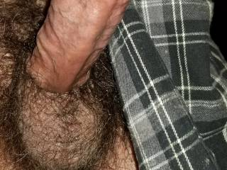 My Hard Cock And Hairy Cum Swollen Balls