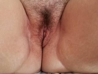 Wife\'s hairy pussy ready for some fun