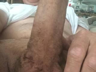 Shaven fresh view