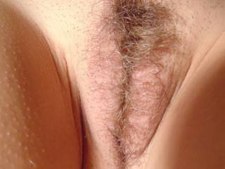 I'd love to see your wife's hairy pussy up close. So sexy.