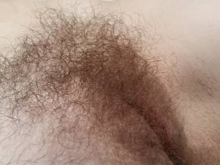 my cute hairy bush before I trimmed it down. hubby does love to rub his face deep in my thick bush, he just loves how I smell as his tongue works away at my slick pussy.