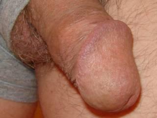 Showing off my cock head wearing her panties