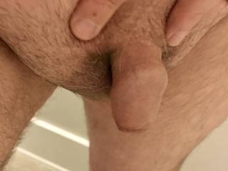 My little shaved cock