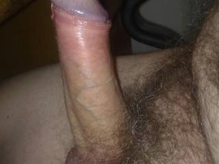 great cock surrounded by a delicious bush - would love to beat around it. ur cockhead should get some heavy attention.