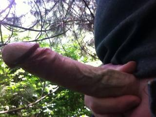 Huge cock outdoors