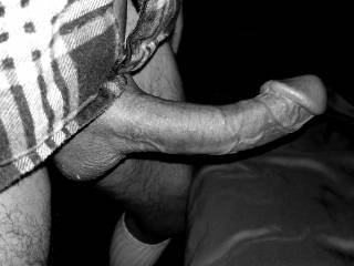 Curvey cock in Black and white