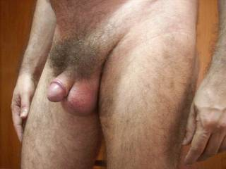 i so love your penis- perfect glans nicely ridged to hold back any foreskin you may have-beautiful full balls, so suckable. would love to feel you harden as i suck your perfect glans...