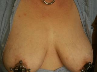 Her new nipple clamps.