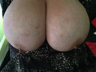 a lovely mature lady I met thru work, let me kindly snap a photo of her big breasts, after she had sucked my balls dry....just sensational