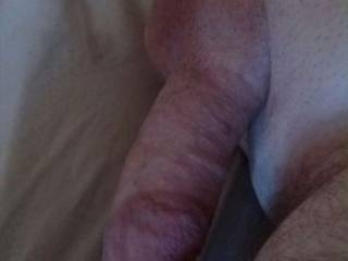 I'm not sure if I have enough dick pics on here so here's another on