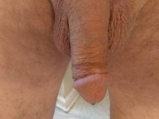 Looking at Zoig friends, I have some precum dripping