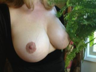 One of my favorite types of pictures...is of a sexy married woman's breasts being exposed that way.  Oh how I love seeing them hanging out like that exposed to the world.  You know I want to be all over them...with my hands and mouth.  Those look so sexy.  Mmmmm, so delicious too.  G