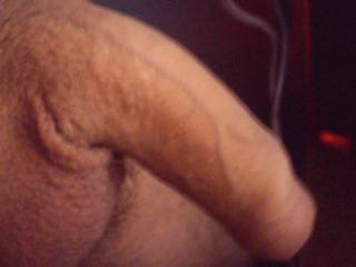 what is to tell it got horny and started to rise up ;)