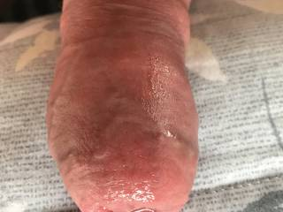My swollen cock after long session.