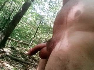 """Went to a """"Male\'s Only"""" campground yesterday that had a nudist section. Went for a long walk in the woods. I love having the sun and wind on my naked body."""