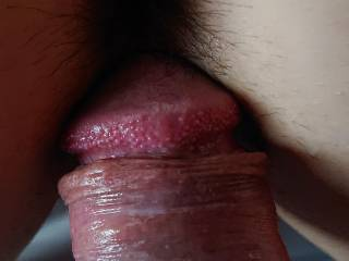 My hard dick close to wife's pussy