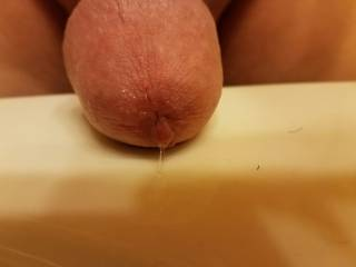 Dripping pre cum after looking at all the sexy Zoig women. Anyone like a taste? I promise it tastes sweet.