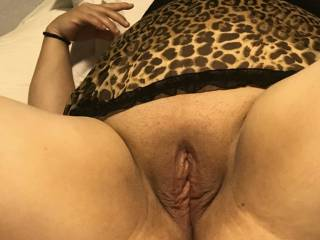 Fredy Shaved pussy