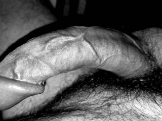 Black and white cock pictures
