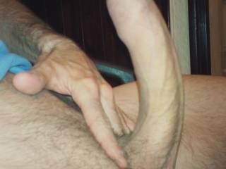 My cock curved and uncut....