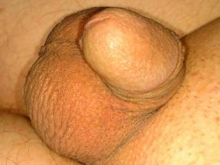 My tiny cock. Can't believe I'm showing it but here it is.