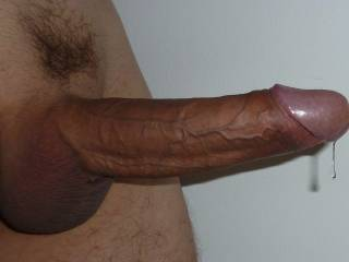 That is one nice, thick, long, and gorgeous cock.  Bet it would feel great stretching every nook and cranny of my tight, little, wet, asian pussy; especially after I sucked it nice and good...