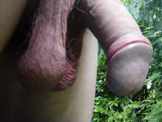 That\'s so good To enjoy nature!!! I would like To know your desire?!!!