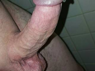 Hard as a rock... but I like the way his full semen sac is bouncing up and down too!