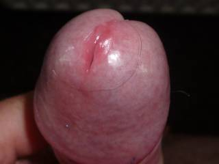 my angry cock head