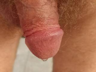 Half staff clock leaking precum. I need a mouth to feed.