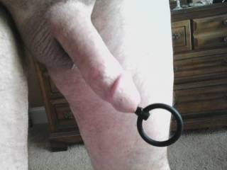 Hubbies dick, fresh shaved, plugged, hanging out, going out to enjoy the sun.