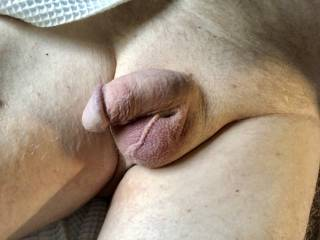 Soft cock before looking at my friends on Zoig.