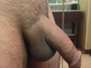 Just another boring picture of my soft dick in a hotel room before covid