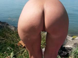 That is an ass looking for a good time.