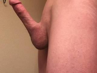 I love taking different angles on my hard dick