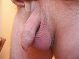 Would you like to suck my uncut prick and lick my big balls???