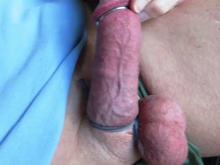 this cock is really tied up.... my veins showing