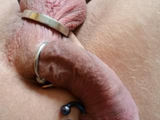 My curved cock and balls