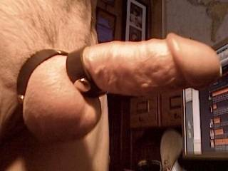Sometimes you just get hard. I did after I put on this leather cock and ball ring because it just felt kinky. Is the head of my cock cut off in this photo?