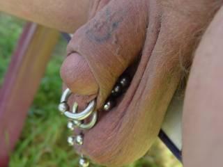 my pierced dick