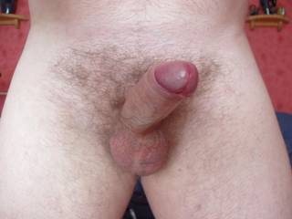 never held or sucked a cock before - but would love to do yours..