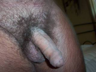 Great looking cock with a nice foreskin!