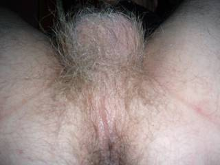 just my hairy ass looking for some rimming