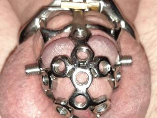 How do you like this torturous chastity cage for hubby?  The more he misbehaves, the more the screws will get tightened, biting into his little penis.