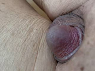 Small Asian cock waiting to be stroked